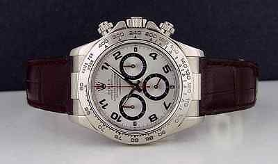 ROLEX 18kt White Gold 40mm Daytona - Deep Wine - Silver Dial - 116519 SANT BLANC